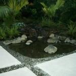 farrar_street_landscaping_IMGP1202