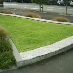 glen_eden_landscaping_IMGP1197