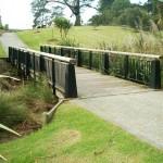 wainoni_park_landscaping_auckland_IMGP1151