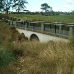 wainoni_park_landscaping_auckland_IMGP1241